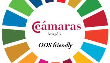 El Clúster de la Energía de Aragón y Fundación Sesé inician el ciclo: 'Las empresas con los ODS'